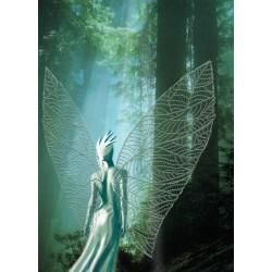 Fée aile