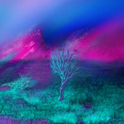 Cyberland 12